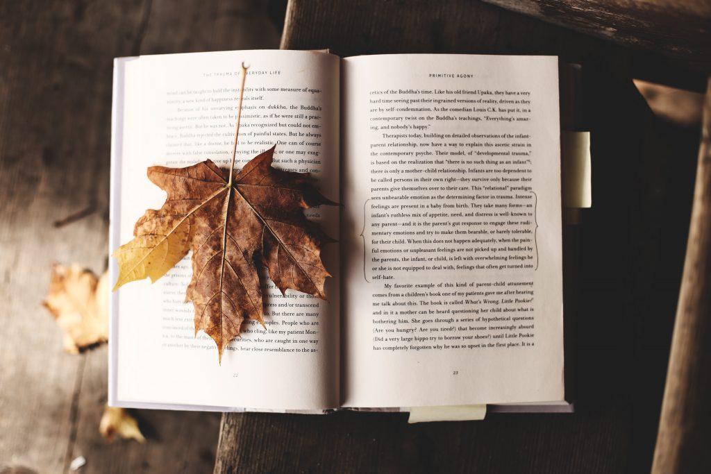 Autumn Date Ideas